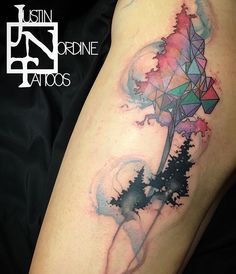 My god I'm in love. Geometric, watercolor, nature tattoo.