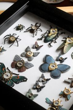 Cabinet of Curiosities Specimen no. 90 -The Curious Collection - original insect paintings by Mab Graves Cabinet Of Curiosities, Deco Originale, Weird And Wonderful, Art Plastique, Oeuvre D'art, Curiosity, Altered Art, Artsy Fartsy, Collage