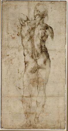 Michelangelo, Stehender männlicher Rückenakt, um 1503 © Albertina, Wien…