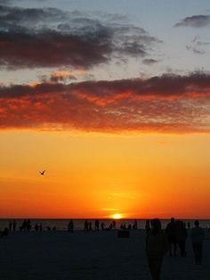 Siesta Key Sunset - Sarasota, Florida. Like it was just yesterday... How I miss this place... One of the most beautiful places to watch the sun go down <3