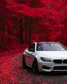 Cars Discover Autumn offers so many opportunities to amaze. The BMW Coupé. Bmw M6 Coupe, Bmw X5, Bmw Scrambler, Bmw 328i, Bmw White, Carros Bmw, Bmw Wallpapers, Bmw Autos, Bmw Classic Cars