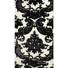 Sample Of Black Lions Velvet Flocked Wallpaper By Burke Decor 10 Liked On Polyvore Featuring Home Sa