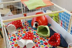 PVC pipe?  Genius.  Why didn't I think of that!  This cage is so cute and colorful...when we get settled, I want to fleece up the piggies' cage.