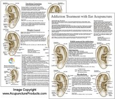 Acupuncture points charts