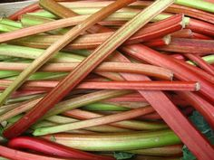 Easily freeze rhubarb for the winter with these four rhubarb freezing techniques. Also enjoy a recipe video teaching how to make rhubarb jam. Frozen rhubarb tips. Rhubarb Uses, Freeze Rhubarb, Rhubarb Jam Recipes, Rhubarb Rhubarb, Rhubarb Galette, Indian Food Recipes, Fall Recipes, Rhubarb Chutney, Compost