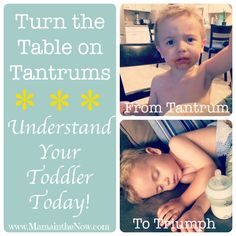 Understand Your Toddler Today