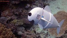 Crean innovador pez robótico que permite documentar la vida marina