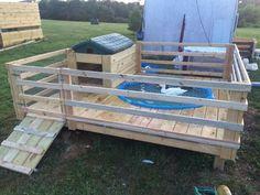 Cool idea make bigger for dogs backyard ducks, backyard farming, chicke Backyard Ducks, Backyard Farming, Chickens Backyard, Chicken Coop Plans, Building A Chicken Coop, Diy Chicken Coop, Raising Ducks, Raising Chickens, Duck Enclosure