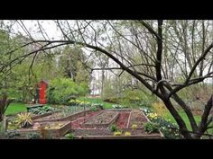 """My """"Seed-Shopping Rules"""" video, from my new book THE BACKYARD PARABLES."""