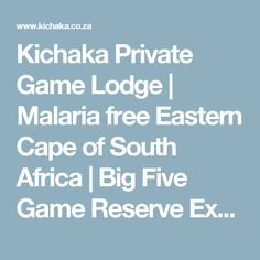 Kichaka Private Game Lodge | Malaria free Eastern Cape of South Africa | Big Five Game Reserve Experience