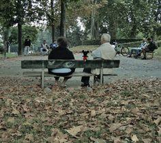 non è un mondo per vecchi, Torino by Marcella Bodo