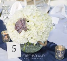 Stunning Hydrangea combination of succulent wedding nautical center piece..