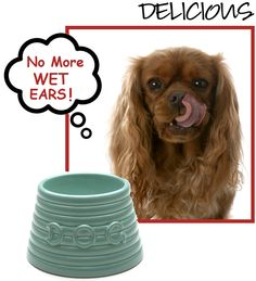 Spaniel Bowls - haha!!!  Ladybug makes a MESS when she drinks her water...might have to look into this.  LOL