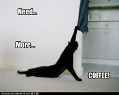 Need... More... Coffee