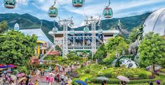 Top 20 things to do in Hong Kong: Ocean Park