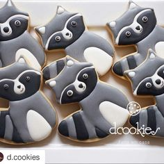 My Cute Fox cookie cutter can be a raccoon as well.  They're so cute @d.cookies! ・・・ 1..2..3...Guaxinim   #dcookies #cookiesdecorados #guaxinimcookies  Cortador by @howsweetisthat ❤️