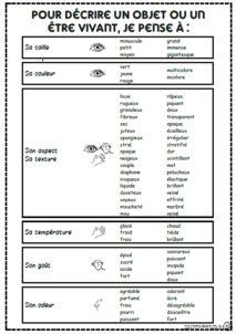 Trouver des adjectifs et enrichir sa phrase, description, décrire, ce1, ce2, cm1, dixmois