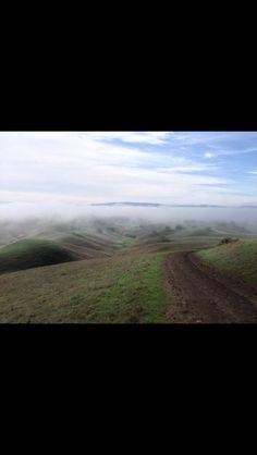 Morgan Hill, CA (by Liz Sandberg)