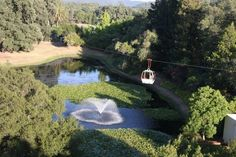 One of the more unique ways to get to your wine Napa Valley wine tasting! The Sterling Vineyard Tram Cars glide over the lily pond on the ride up to the winery.  http://napavalley.winecountry.com/wineries/featured/Sterling_Vineyards_961441426-15844/index.html