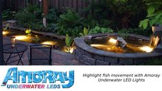 These high-quality Nicheless LED Underwater Lights are Corrosion free,Waterproof & to be used for Pools,Ponds,Lakes,Fountains Inground Pool Lights, Underwater Led Lights, Pond Lights, After Dark, Water Features, Light Fixtures, Swimming Pools, Fountain, Rainbow