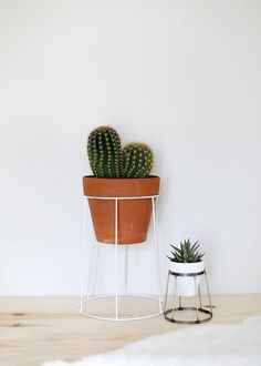 DIY Wire Plant Stand
