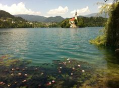 Lake Bled, been there! Loved it!