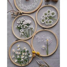 Plants transparent embroidery kit for beginner,flower diy Kit,beginner Hand Embroidery Full Kit ,diy start up embroidery set Diy Embroidery Kit, Hand Embroidery Art, Modern Embroidery, Beginner Embroidery, Embroidery Hoops, Floral Embroidery, Hand Embroidery Projects, Embroidery Floss Crafts, Embroidery Flowers Pattern