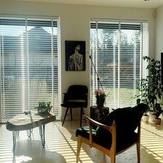 #salon #salondecor #kwiaty #livingroom #livingroomdecor #livingroomideas #livingroomdesigns #livingroomdecorations #livingroommodern #livingroomfurniture #modernhomedecorlivingroom #modernhomedecorideas #modernhomedecorinteriordesign #modernhouse #modernhousedesign #vintagehomedecor #vintagehouse #homeinterior #homeideas #homeinspiration #homeinteriordesign Living Room Modern, Living Room Designs, Living Room Furniture, Living Room Decor, Modern House Design, Vintage Home Decor, Decor Interior Design, Blinds, Curtains