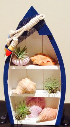 Charmant Boat Shelf With Air Pants And Sea Shells