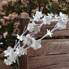 Coronetes flors blanques