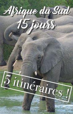Itinéraire Afrique du Sud 15 jours