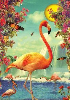 Love this Flamingo
