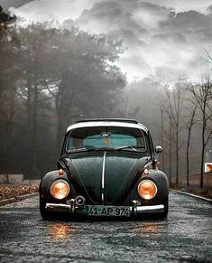 #volkswagenvintagecars