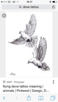 dove#pigeon#sketch   dove tattoos   Pinterest   Dove pigeon ...