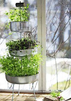 DIY nursery for peas and sunflowers. How-to: meilläkotona.fi/tee-itse (in finnish) Garden Gates, Garden Art, Garden Plants, Garden Ideas, Diy Planters, Planter Pots, Just Do It, Gardening Tips, Indoor Gardening