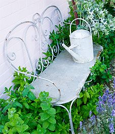 love the bench, love the watering can. would be great place to plant mint