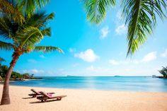 Mauritius - Ylellistä rantaelämää. http://www.finnmatkat.fi/lomakohde/mauritius/grand-baie/lux-grand-gaube/?season=talvi-14-15 #finnmatkat #mauritius #beach
