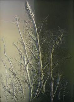 Sue Woolhouse - Gallery