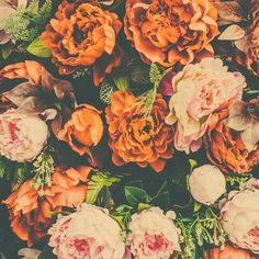 Fondo floral con flores naranjas y rosas Foto Gratis