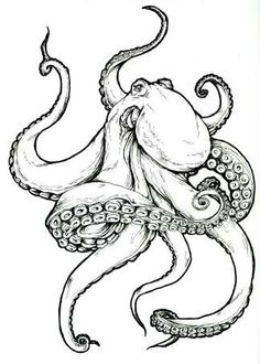 Octopus tattoo, Meagan Glennon - I have tattoo design for a friend . - Octopus tattoo, Meagan Glennon – I made tattoo design for a friend – - Octopus Tattoo Design, Tattoo Designs, Octopus Tattoos, Sketch Tattoo Design, Octopus Art, Octopus Sketch, Octopus Tentacles, Easy Octopus Drawing, Paintings