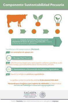 Componente Sustentabilidad Pecuaria Apoya a las Unidades Económicas Pecuarias. SAGARPA SAGARPAMX