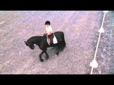 How to set horse up to pick up CORRECT LEAD (with Jane Savoie)