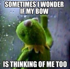 Sometimes I wonder if my bow is thinking of me too • Kermit