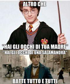 Classe Harry Potter, Harry Potter Dolls, Harry James Potter, Harry Potter Tumblr, Harry Potter Cast, Harry Potter Anime, Harry Potter Fandom, Harry Potter Memes, Harry Potter Hogwarts