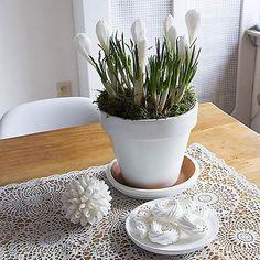 Arreglo floral de primavera con crocus #DecorarConFlores