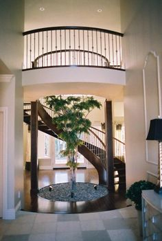 Love the natural element of the tree growing in the room and the spiral stairs bordering.