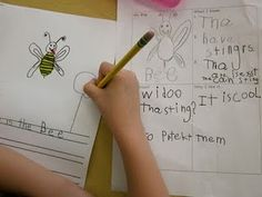 Fantastic research unit for kindergarteners and even first graders- insects