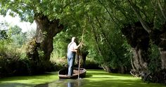 Sightseeing In France: discover the Green Venice of South West France Costa, French Wedding, Famous Places, Outdoor Activities, Marie, Tourism, France, Landscape, Holiday Ideas