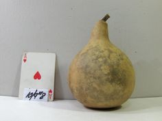 Mini Martin Gourd dried & cleaned craft ready great to make christmas Santa or ornaments Birdhouse..10/9#8 by midmowoodworks on Etsy