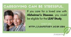 Northwestern University Chicago, Alzheimer's Caregivers, Alzheimer's And Dementia, National Institutes Of Health, Alzheimers, San Francisco, Stress, Study, California